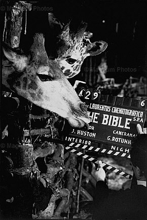The Bible (1966) - backstage shot